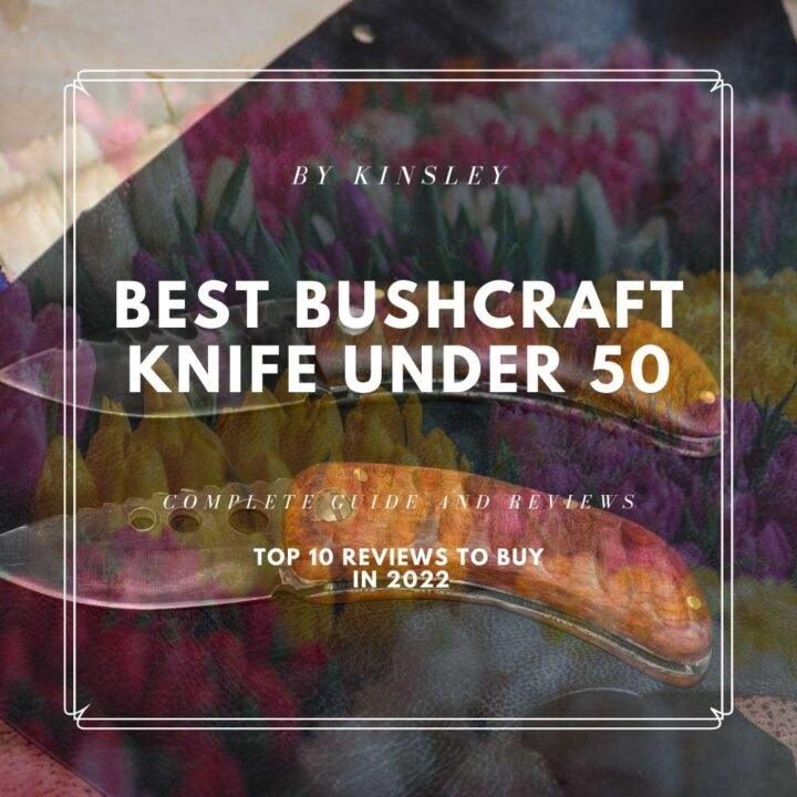 Best Bushcraft Knife Under 50 in 2022- Top 10 Reviews To Buy