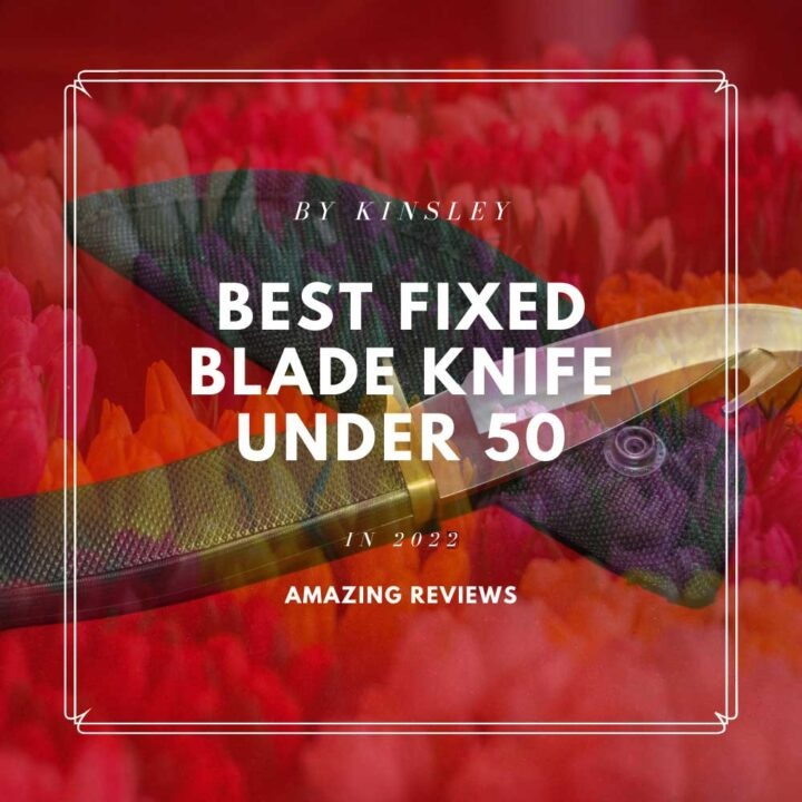 Best Fixed Blade Knife Under 50$ – 7 Amazing Reviews in 2021
