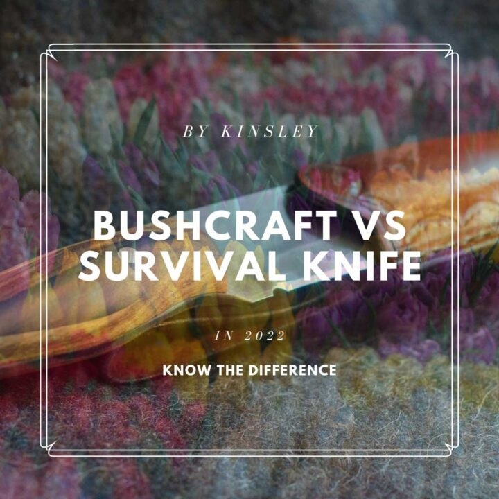 Know the Difference Between Bushcraft Vs Survival knife